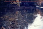 REFLECTIONS IN THE LITTLE PIGEON RIVER (GREAT SMOKEY MOUNTAINS, TENNESSEE)