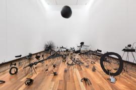David Shrigley: Lose Your Mind. Insects, 2007 at Instituto Cultural Cabañas, Guadalajara, Mexico November 2015.