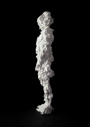 Marcus Coates 'Iron Prominent, Notodonta dromedarius (Moth) Self Portrait, shaving foam' 2013