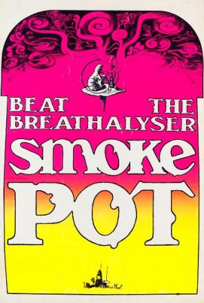 BEAT THE BREATHLYZER - SMOKE POT