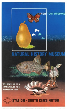 VISIT YOUR MUSEUMS - NATURAL HISTORY MUSEUM