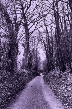 HODE LANE, CANTERBURY