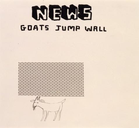 GOATS JUMP WALL