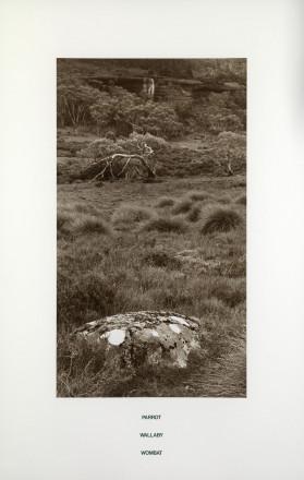 Fulton Hamish-P3860 B Tasmania