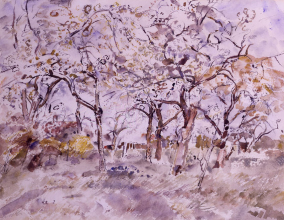 THE ORCHARD, RIDLEY
