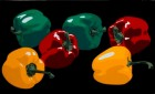 STILL LIFE WITH YELLOW, RED AND GREEN PEPPERS