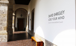 David Shrigley: Lose Your Mind installation in Guadalajara