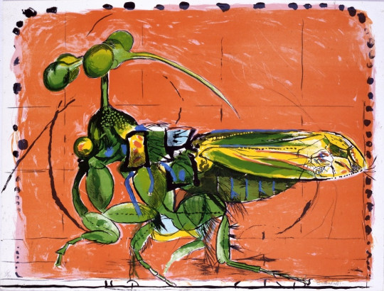INSECT (SIMULATING SEEDS)