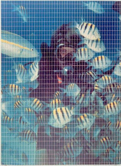 ULTRAMARINE ATTACHMENT (LAURA LOVES FISH)
