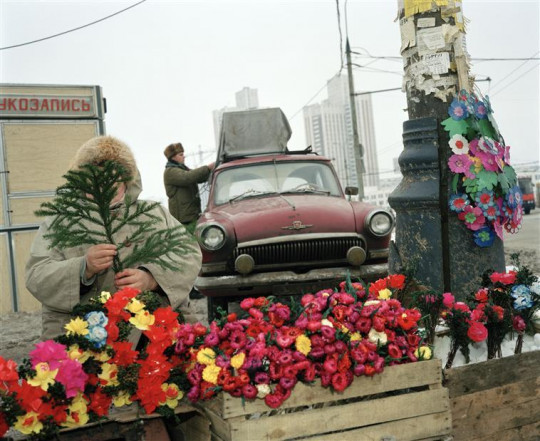 PINK FLOWERS AND RED CAR, MOSCOW
