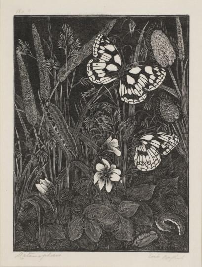 Daglish Eric Fitch-P2385 Metamorphosis 1938